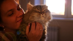 Girl holding a cat in her arms, caressed him, scratching his hair Stock Footage