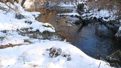 Forest river flowing water late nature winter melted ice landscape, arrival of Stock Footage