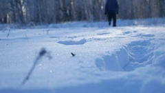 Man running in the snow legs in shoes field and forest beautiful landscape Stock Footage