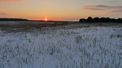 Winter landscape with snow field of dry nature grass late in the evening sun Stock Footage