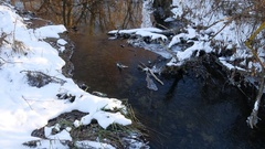Forest creek flowing grass in the forest late beautiful nature winter landscape Stock Footage