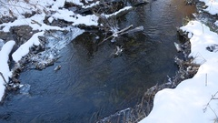 Forest river flowing water late winter nature a melted ice landscape, arrival of Stock Footage