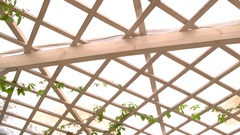 Wooden pergola roof. Stock Footage