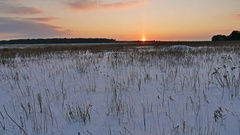 Winter landscape with snow field of dry grass nature late in the evening sun Stock Footage