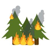 Wildfire destroys pines smock Stock Illustration