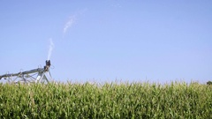 Agriculture Shot of Water Spraying from Farm Sprinkler with Blue Sky Stock Footage
