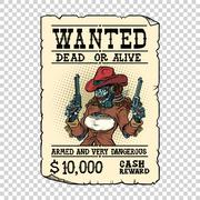 Steampunk female robot bandit, wild West Western style Stock Illustration