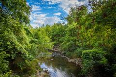 Little Sugar Creek, at Freedom Park, in Charlotte, North Carolina. Stock Photos