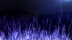 Growing star in fantastic grass. Abstract background Stock Footage