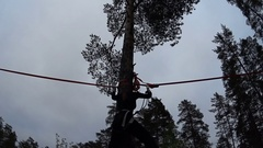 Young girl overcome obstacles on slackline on high tree in forest.View from down Stock Footage