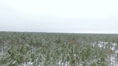 4K Aerial.   Fly  over  Winter   frozen  wood  with turn Stock Footage