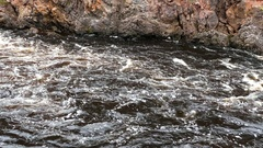 Tilt from a stream to the forest in Oulanka National Park Stock Footage