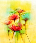 Watercolor red poppy flowers painting Stock Illustration