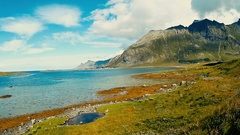 Ariel view Lofoten islands, blue fjord, bridges, Norwegian countryside. Stock Footage