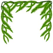 Fir tree branches frame. Happy New Year background. Stock Illustration