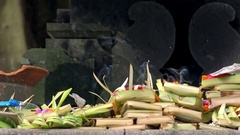 Traditional ceremonial offering to gods in Hindu Temple. Bali, Indonesia Stock Footage