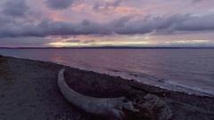 Purple Glow Sunset at Golden Gardens Seattle Washington USA Waterfront Park Stock Footage