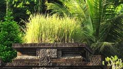 Hindu sanctuary Gunung Kawi Temple Complex. Bali, Indonesia Stock Footage