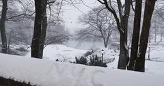 Snowy Winter Establishing Shot of Central Park   Stock Footage