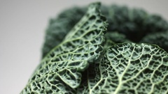 Green Savoy cabbage leaf rotating Stock Footage