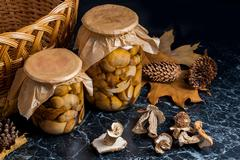 Two glass jars with wild pickled mushrooms and dry white wild mushrooms on .. Stock Photos