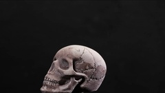Human skull in loop rotation with white smoke Stock Footage