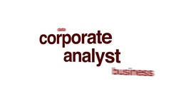 Corporate analyst animated word cloud. Stock Footage