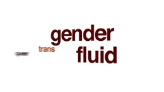 Gender fluid animated word cloud. Stock Footage