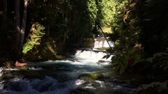 McKensie River down from Sahalie Falls Oregon Stock Footage