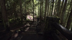 Tourist walking up Wooden steps leading down to McKenzie river Sahalie Fall.. Stock Footage