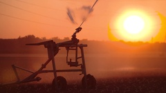 Sunset with a sprinkler system in summer in germany Stock Footage