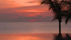 Beautiful Florida sunrise shot Stock Footage