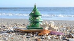 New Year's fir-tree on the beach. Stock Footage