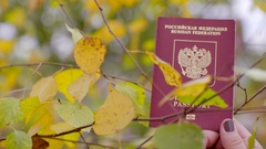 Russian passport and birch leaves Stock Footage
