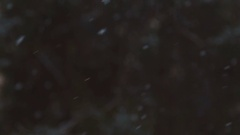 Snowfall. City distance. Frosty cold weather. Slow motion Stock Footage