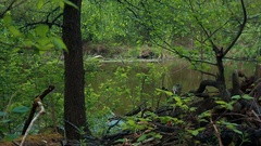 Kayak floats down the river Stock Footage