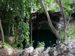 Mexico Valladolid jungle Cenote Zaci swimmers iguana DCI 4K Stock Footage