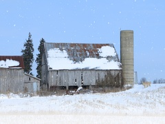 4K UltraHD Old barn in a winter landscape Stock Footage