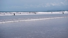A large number of surfers trying to catch a wave off the coast. People are Stock Footage