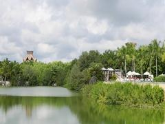 Mexico luxury resort natural lake jungle swim pool pan DCI 4K Stock Footage