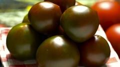 Ripe tomato varieties prints.Na black saucer close-up, rotate slowly Stock Footage
