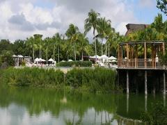 Mexico luxury resort nature lake swimming pool DCI 4K Stock Footage