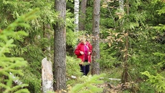 Woman collecting mushrooms in forest autumn nature Stock Footage
