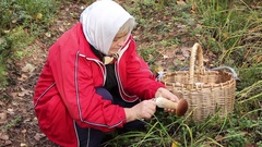 Elderly woman found several fungi Stock Footage