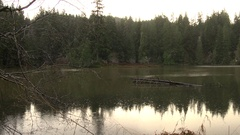 Sun rises over small lake during rainstorm Olympic Peninsula Stock Footage