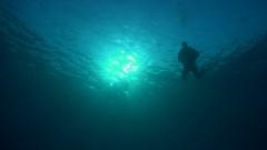 Silouette of descending scuba diver Stock Footage
