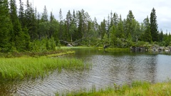 Lake in Borgefjell National Park Stock Footage