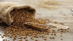 Sack of wheat, honey, and fresh baguettes on a rustic wooden table. Countryside Stock Footage