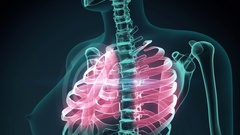 3d rendered illustration of a painful rib. medical concept animation. Stock Footage