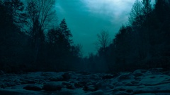 Moonlit Night Creek Cinematic Forest Stock Footage